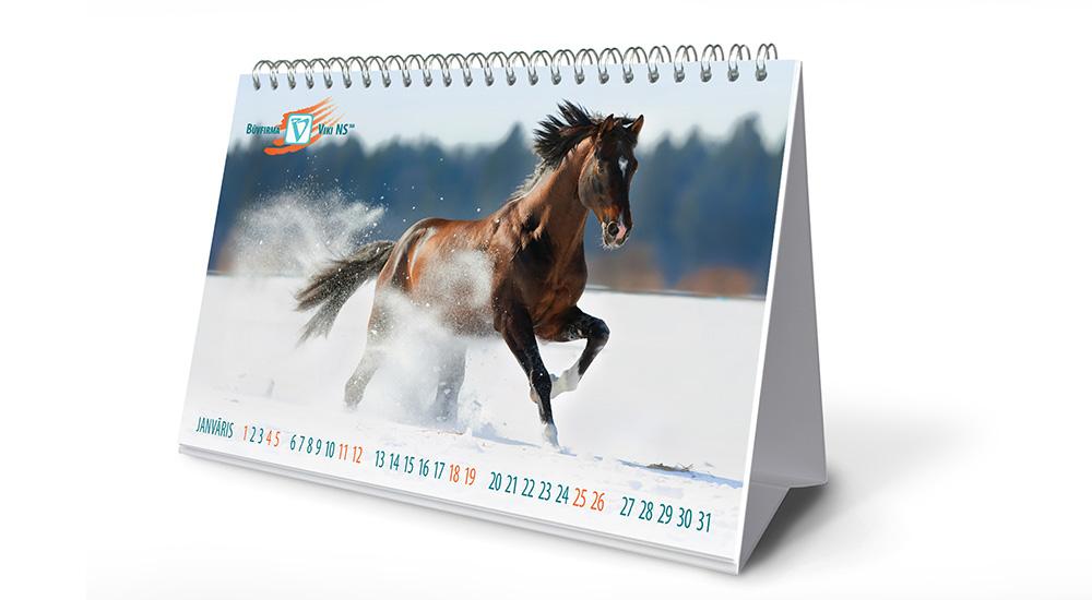 vikins-calendar-2014-01